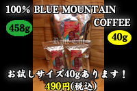 100% JAMAICA BLUE MOUNTAIN COFFEE